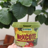 【観葉植物肥料】ハイポネックスの新商品、ネクスコートの効果がすごい!ウンベラータ【Before→After】