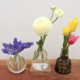 花のある暮らしってやっぱいい♡ホルムガードフローラに春の花