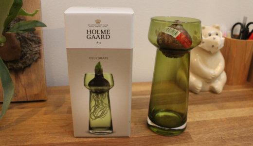 【scope】ホルムガードの花瓶・セレブレイトが7年ぶりの再販!【ヒヤシンス水栽培】